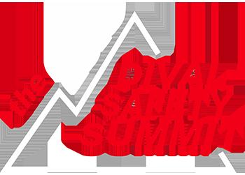 2019-Safety-Summit-WHITE-350